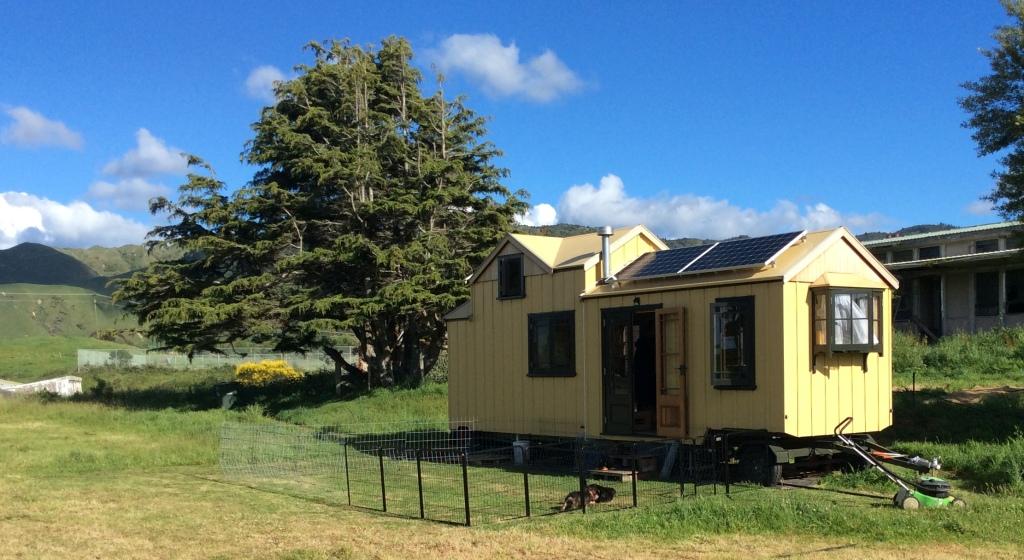 House with shade tree