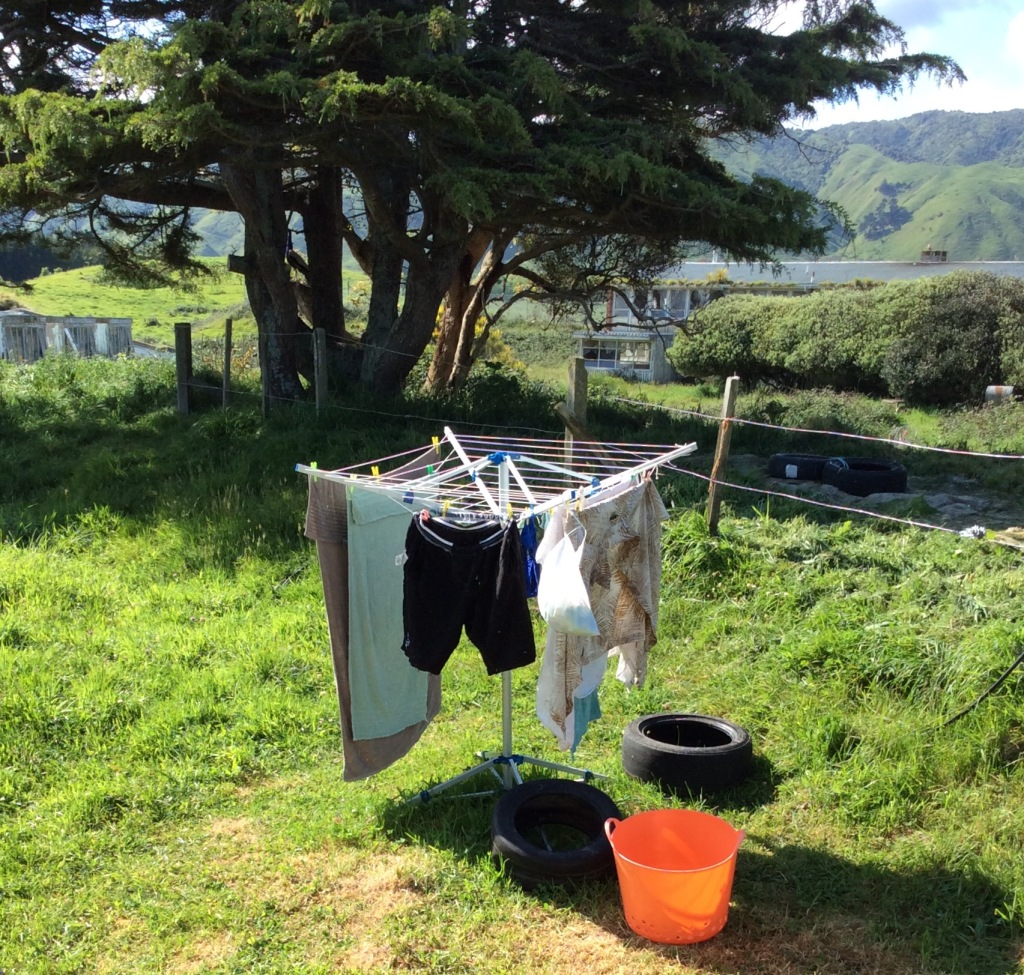 Washing on line