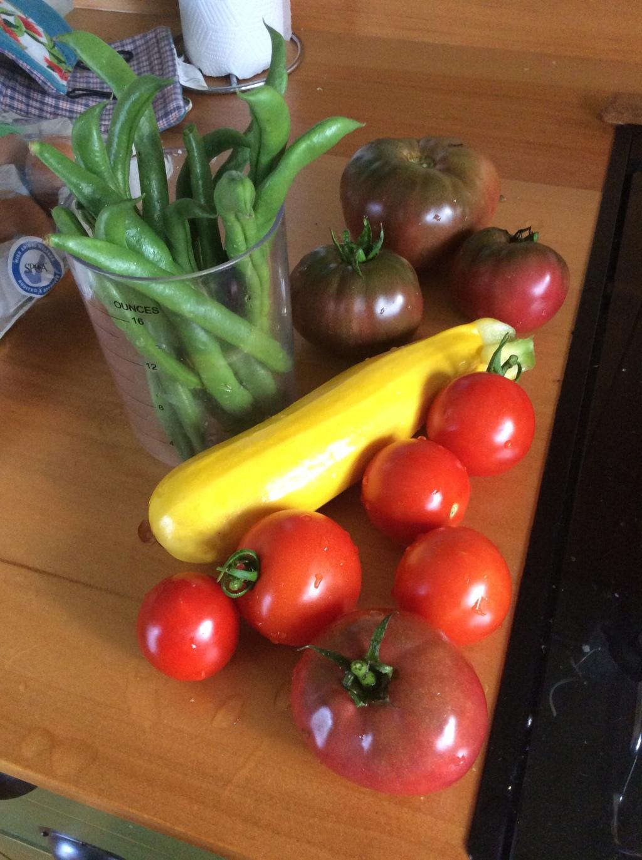 Garden veges