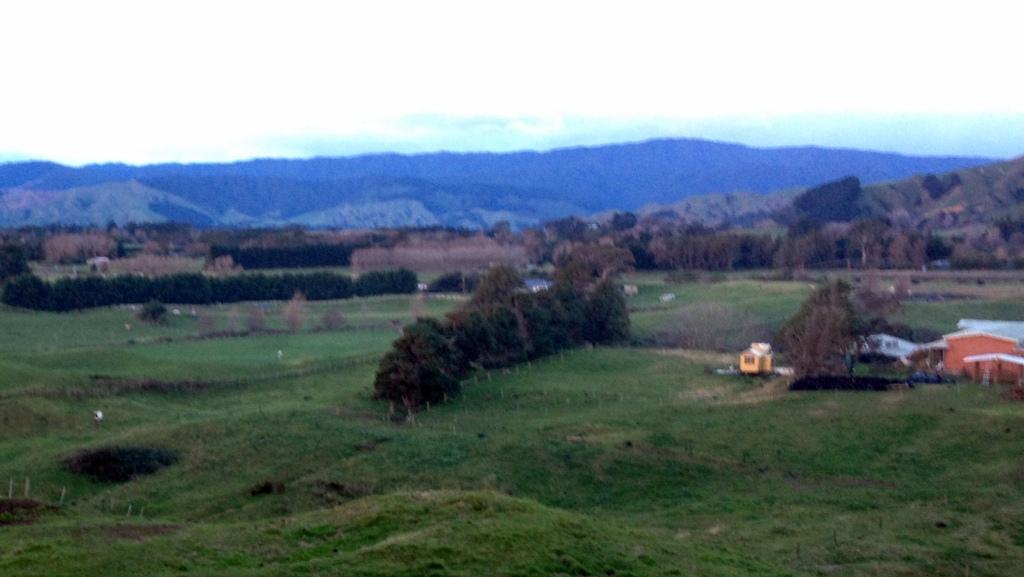View 7 solstice